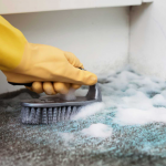 can carpet cleaning remove mould
